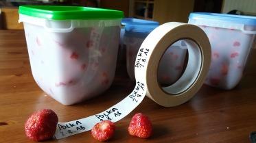 congeler le trop plein de fraises