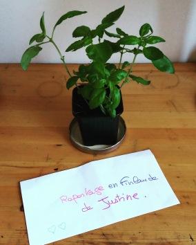 reportage-justine-finlande