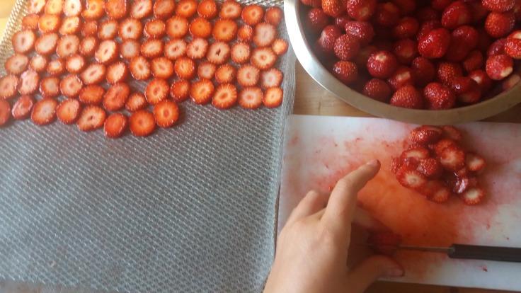 Sécher des rondelles de fraises