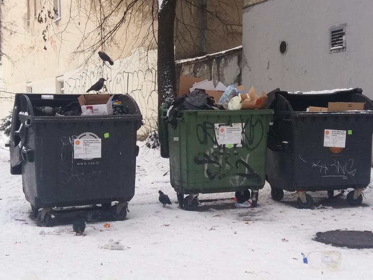 poubelle-corbeaux-lituanie